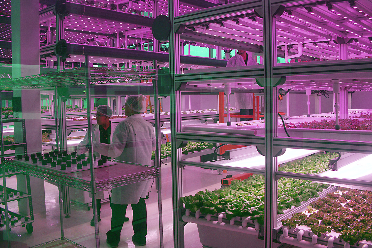 Indoor Farms Driven By IoT and Data